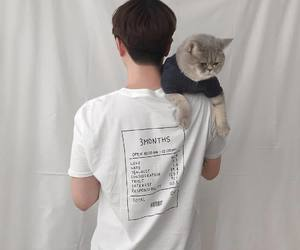 cat, boy, and white image