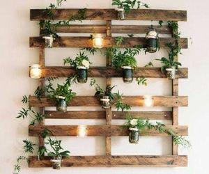 plants, decoration, and decor image
