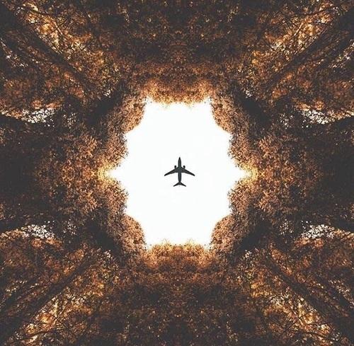 japan, kyoto, and travel image