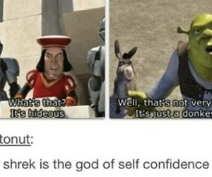 funny, shrek, and lol image