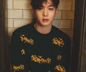 kpop, comeback, and btob image