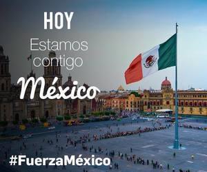 article, fuerzamexico, and gracias image