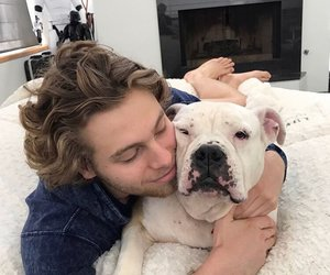luke hemmings, 5sos, and dog image