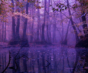 autumn, landscape, and purple image