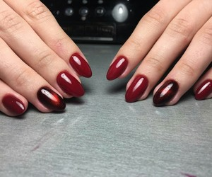 burgundy, manicure, and nails image