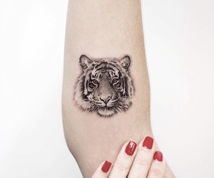 animal, arm, and ink image