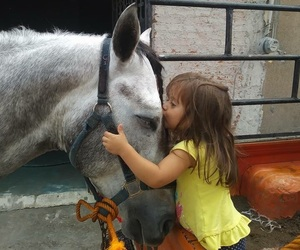 horse, ranch, and mexicana image