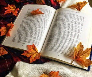 autumn, book, and bookworm image