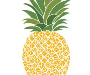 illustration and pineapple image