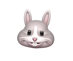 うさぎ, オモシロ, and emoji image