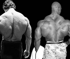 Arnold Schwarzenegger, workout, and fitness image