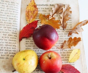 autumn, apple, and book image