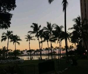hawaii, palm trees, and sunset image