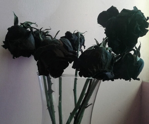 black, grunge, and roses image