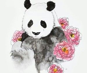 bear, background, and panda image