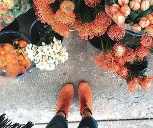 flowers, orange, and autumn image