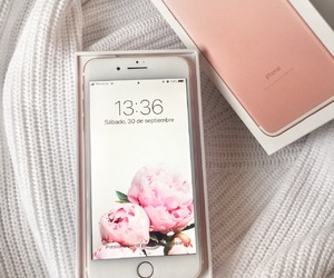 apple, classy, and flowers image