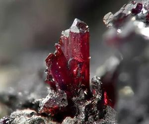 red, crystal, and nature image