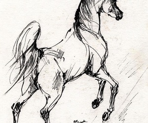 art, horse, and ink image