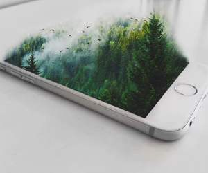 apple, iphone, and trees image