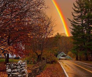 rainbow, autumn, and fall image