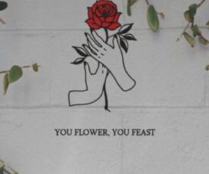 flower, Lyrics, and quotes image