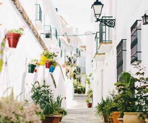 photography, spain, and street image