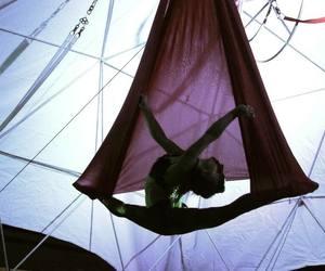 acrobat, aerial, and circus image
