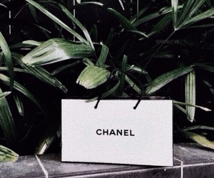 chanel, green, and bag image