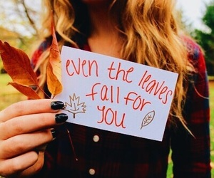 fall, tumblr, and autumn image