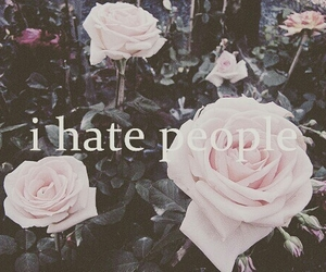 flowers, hate, and people image