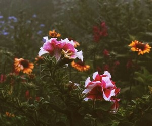 flowers, green, and header image