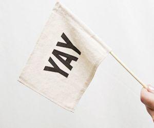 yay, flag, and white image