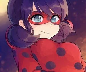 ladybug and miraculous image