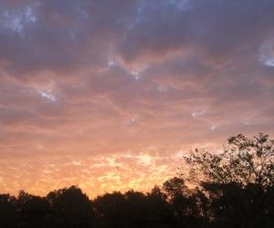 aesthetic, nature, and sunrise image