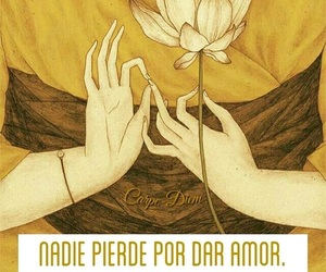 amor, frase, and perder image