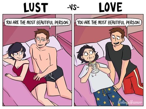 lust, love, and funny image