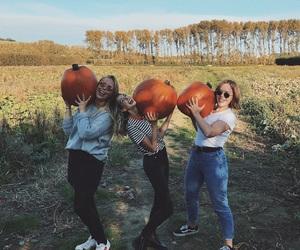 zoella, pumpkin, and tanya burr image