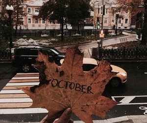 october, leaves, and autumn image