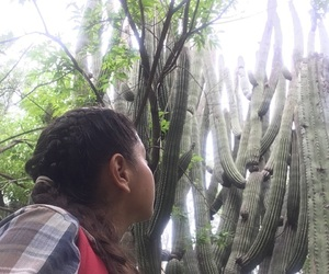 cactus, girl, and green image