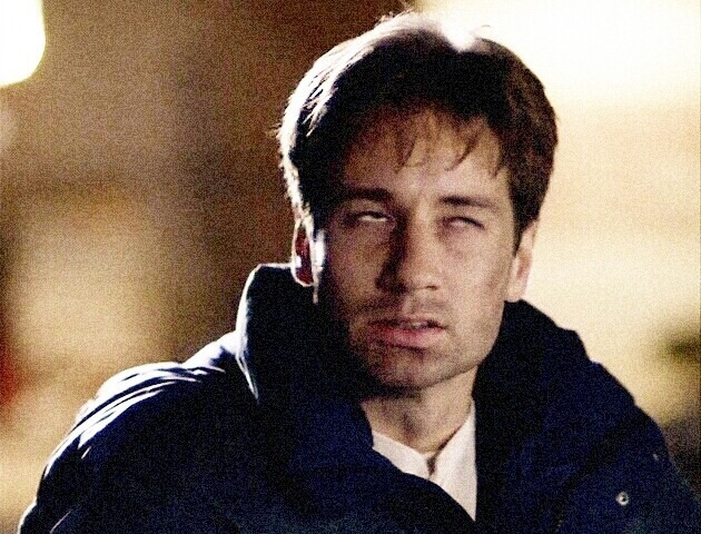 fox mulder and the x files image