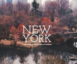 autumn, new york, and fall image