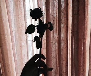 rose, alternative, and shadow image