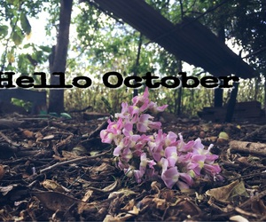 lindo, october, and tumblr image