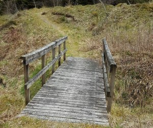 bridge, fear, and writing prompt image
