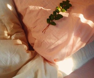 aesthetic, peach, and bed image