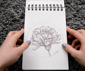 art, flower, and note image