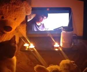 candle, movie, and cat image