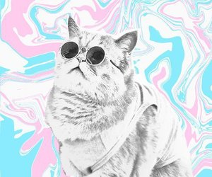 tumblr, cat, and psychedelic image