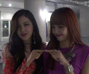 aesthetic, lisa, and rose image